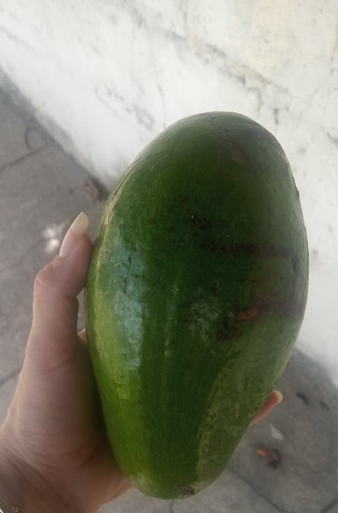 ají cachucha y aguacate